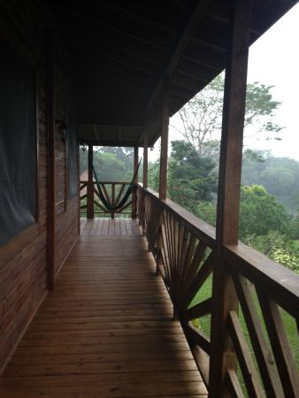 Dream Valley Jungle Lodge : View from the balcony going to the room