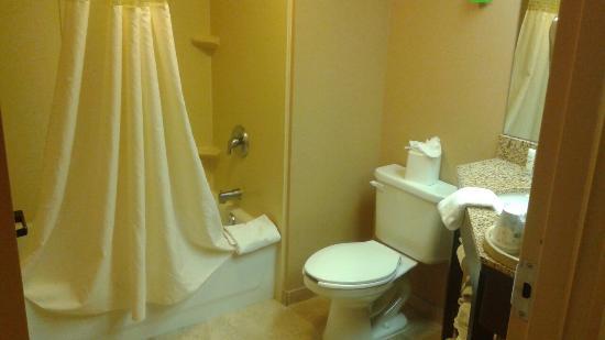 Hampton Inn Boston/Marlborough : Bathroom