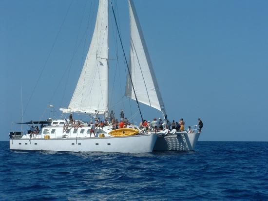 Jolly Roger Roatan Catamaran Sailing & Snorkeling Cruises