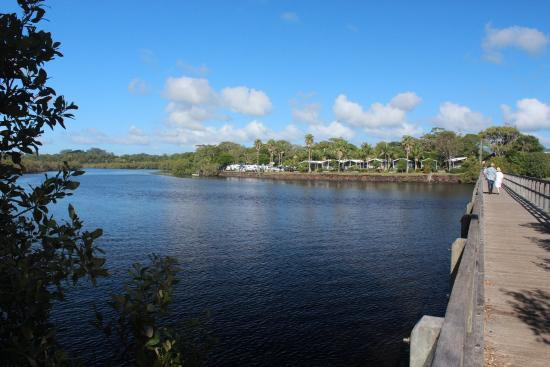 North Coast Holiday Parks Terrace Reserve: Holiday Park beside creek with pedestrian bridge to beach