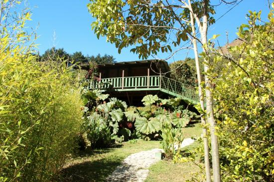 Los Lagos Lodge: Flowers and shrubs everywhere
