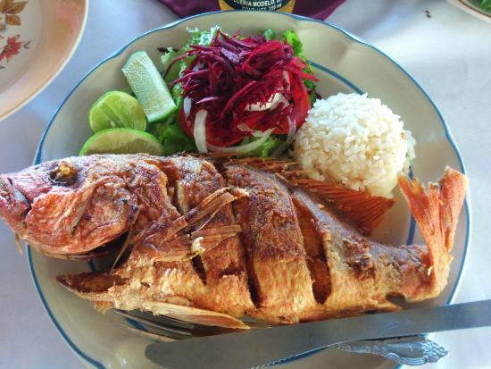 Arcis: Fresh Whole Fish!