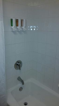 Drury Inn & Suites Nashville Airport: Soap, shampoo and shower gel dispensers in the shower.