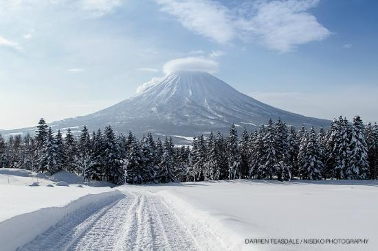 Niseko Photography & Guiding - Day Tour