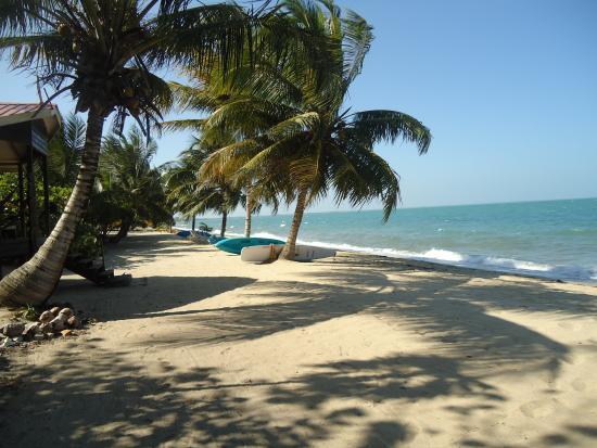 Jungle Jeanie's by the Sea : Beautiful beach