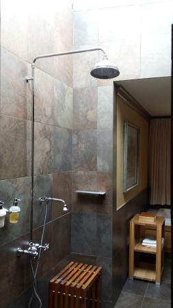 Glass Ceiling Shower