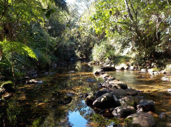 Hotel Posada Montana del Quetzal: Río cerca de la cascada privada.