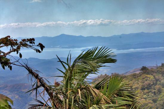Monteverde Cloud Forest Biological Reserve: view
