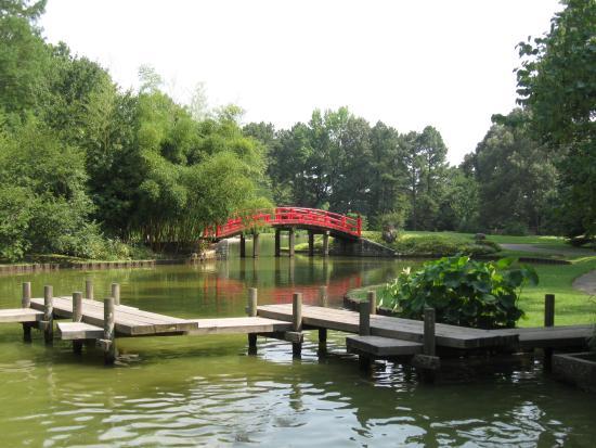 My Favorite Picture Of Memphis Botanic Garden Memphis Tripadvisor