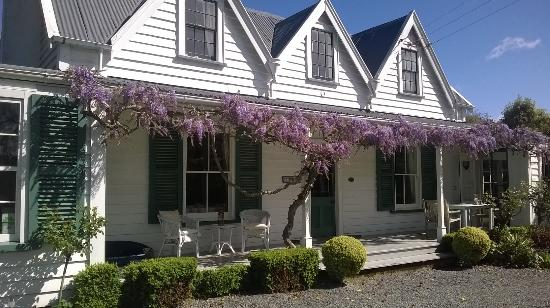 Marlborough Bed & Breakfast: Wisteria in spring