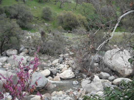 Three Rivers, CA: even in winter, beautiful