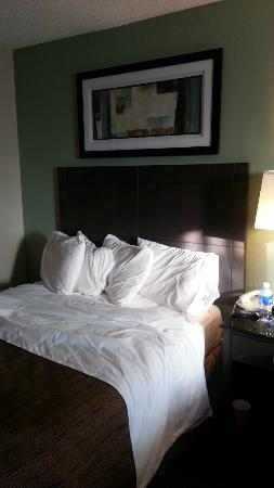 Monterey Bay Travelodge : Bed was modern and comfortable (saving grace!)