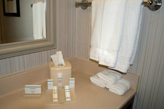 Hilton Garden Inn Allentown West: Nice bathroom amenities in Room 138