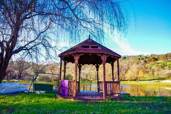 Sivananda Ashram Yoga Farm: The lake area and gazebo