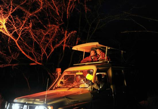 Activity: Night Game Drive - Picture of Sweetwaters Serena Camp, Nanyuki  Town - Tripadvisor