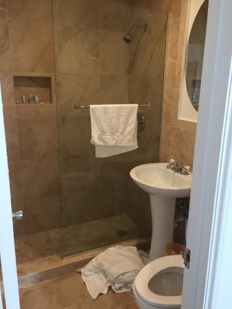 Majestic Hotel South Beach: Walk In Shower.., No Door