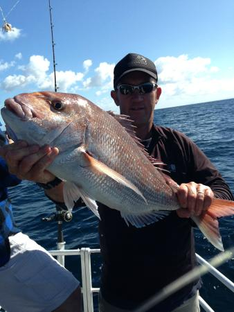 Megabites fishing charter ltd auckland central 2018 for Fishing charters auckland