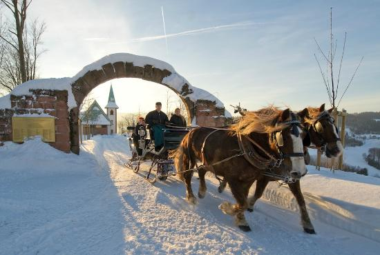 Pferdeschlittenfahrt Im Winter Bild Von Hotel Dollenberg Bad