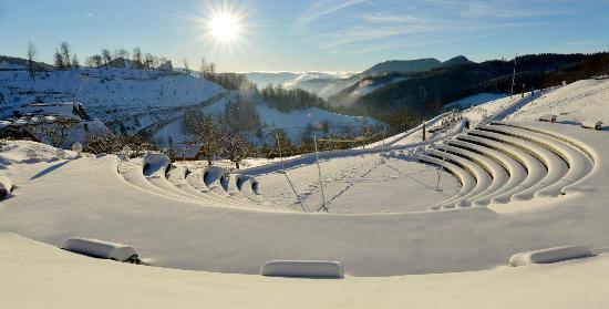 Schwarzwald Resort Dollenberg : Aussicht vom Hotelpark