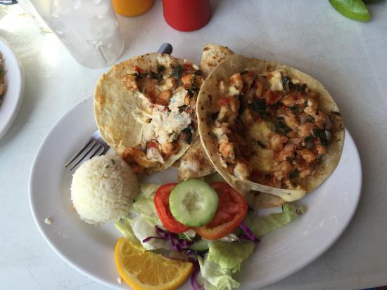 El Toro Guero : Tacos gobernador, shrimp quesadillas, at toro güero