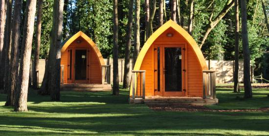 Pinewood Camping Pods