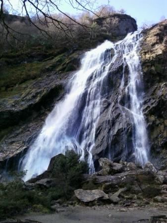Dublin Mountains: Cascada