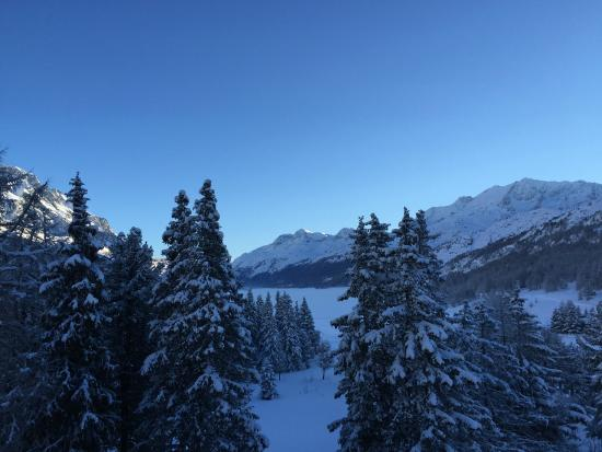 Maloja Palace Hotel: a room with a view