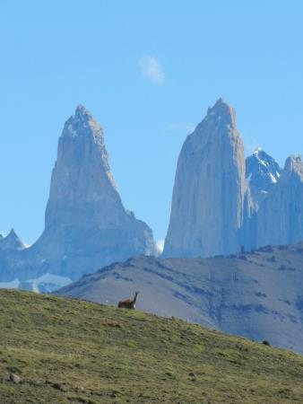 explora Patagonia : As Torres Del Paine