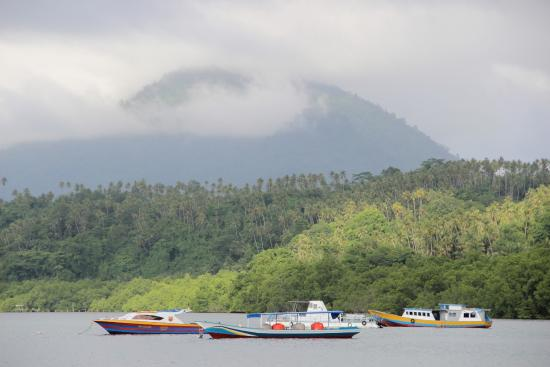 Terrasse partagee picture of froggies divers bunaken - Raja laut dive resort ...
