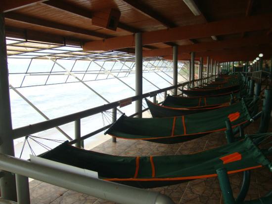 Playa del Este Resort : Hammocks