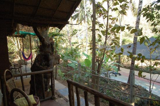 Secret Garden Resort: View from my front porch...