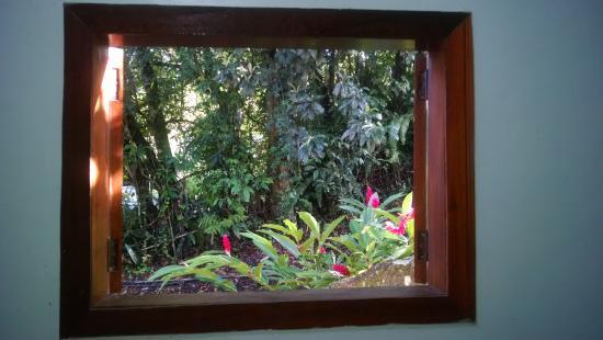 Pousada Riacho Doce: vista da janela do meu quarto