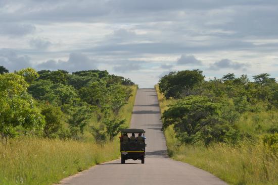 Nkambeni Safari C& safari in de omgeving van Nkambeni Tented lodge & safari in de omgeving van Nkambeni Tented lodge - Picture of ...