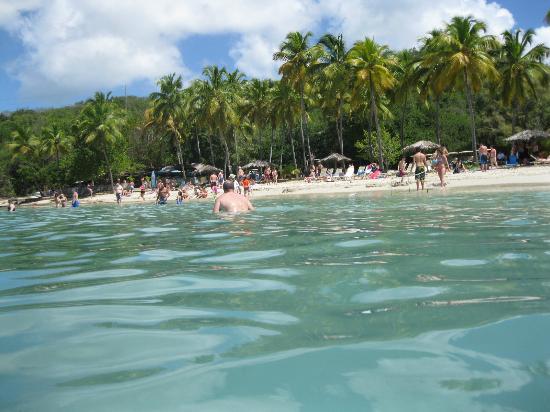 Cool Boats Usvi Honeymoon Beach At Water Island