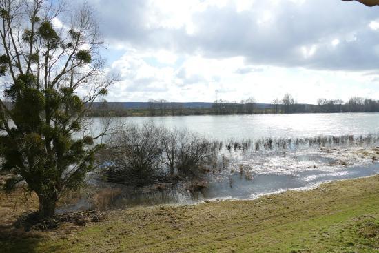 L'Embarcadere: Vue sur la Loire