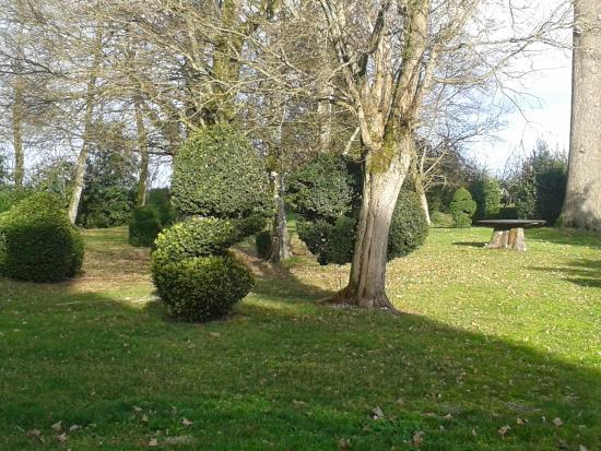 Chateau Pomys: parc