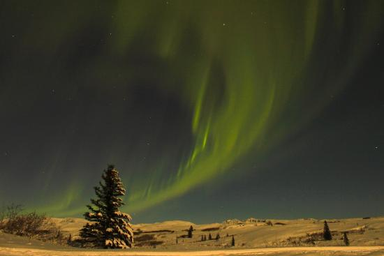 Caribou Lodge Alaska: Northern Lights Viewing From The Deck