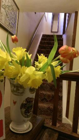 Westcourt Farm: Fresh flowers on reception.