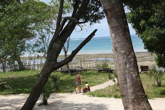 Galu Getaway : beach area
