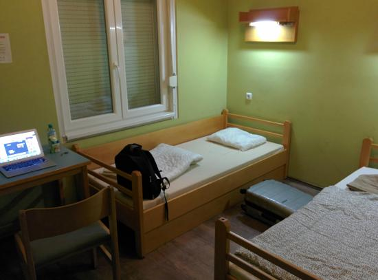 Treestyle Hostel: Single room