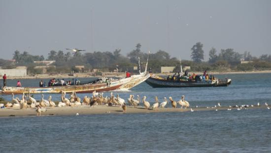 Saint-Louis, Senegal: PN de la Lengua de Barbaria