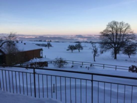 Swiss Seasons Bed & Breakfast: view