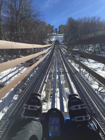 Alpine Coaster: Up up up!