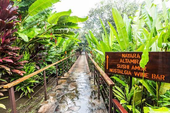 Captivating Nayara Resort Spa U0026 Gardens: Bridge From Nayara Springs Back To Nayara Hotel Design Ideas