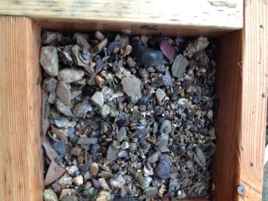 The sapphire gravel pre-cleaned  - Picture of Montana Gems