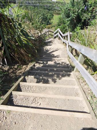 Sugar Loaf Islands and Paritutu Rock : The walk starts with steep stairs