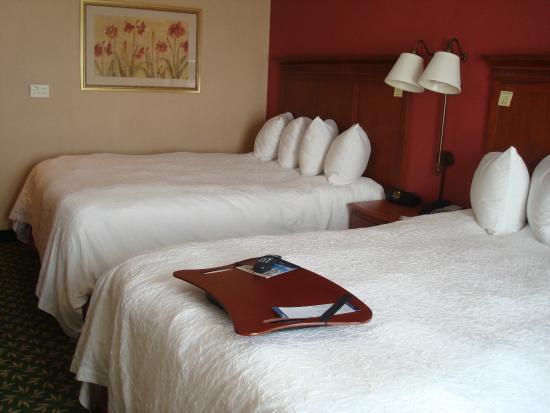 Hampton Inn & Suites Clovis - Airport North: Two queen beds