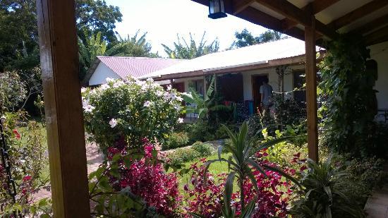 Hostal Cabanas Aorangi: Poseen un bonito jardín
