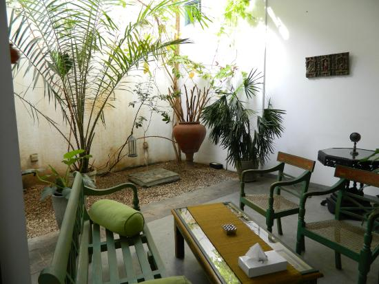 The Reed Boutique Hotel: The Indoor Garden Area