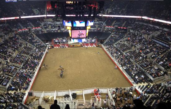 Stock Show and Rodeo